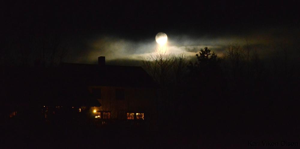 Berglund i måneskinn