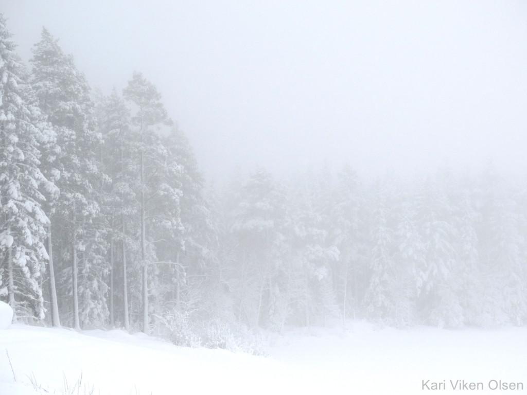 snøvær 2